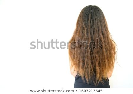 Brown Hair Frizzy Stock photo © albund