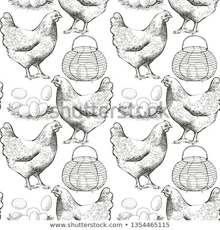 卵 卵 トレイ シームレス 浅い シェル ストックフォト © shutter5