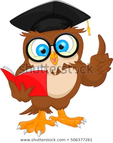 Bölcs bagoly diplomás tanár karakter rajzfilmfigura Stock fotó © Krisdog