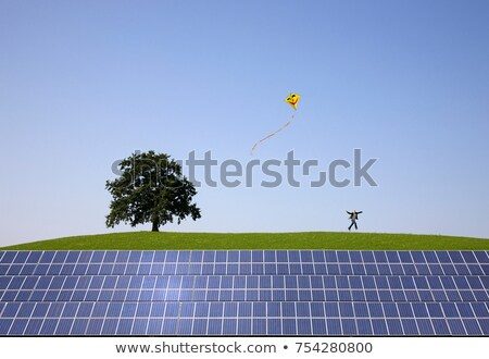man jumping at solar power panels Stock photo © IS2