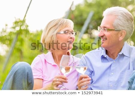 yaz · piknik · şarap · bardakları · sahne · sepet · renk - stok fotoğraf © is2