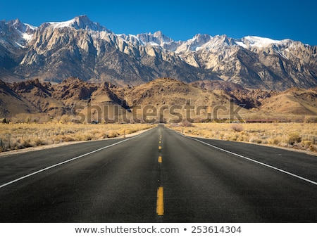 Empty road in the snow, Nevada, USA Stock photo © IS2