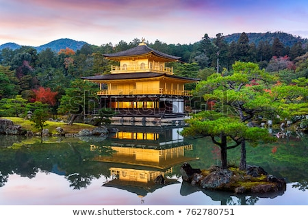 Or temple kyoto Japon forêt nature Photo stock © daboost