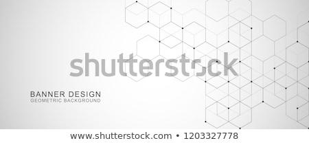 hexagonal subtle dots pattern background Stock photo © SArts