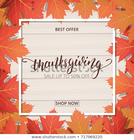 promotion discounts on thanksgiving day isolated stock photo © robuart