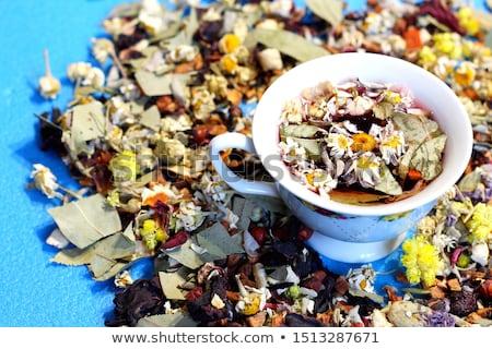 Flower around  cup of chamomile tea on blue background. Stock photo © Illia