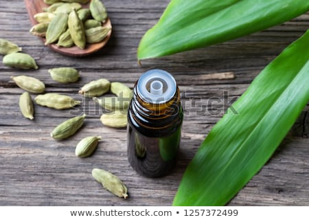 A bottle of cardamon essential oil with cardamon seeds and leaves Stock photo © madeleine_steinbach