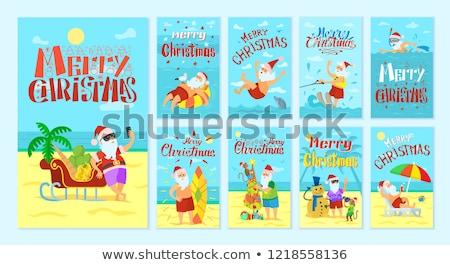 Noel tatil yunus vektör noel baba Stok fotoğraf © robuart