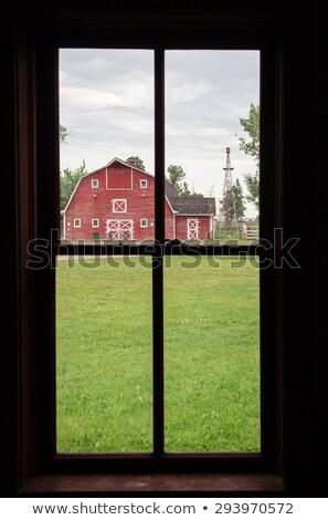 oude · rustiek · witte · plank · schuur · muur - stockfoto © bobkeenan