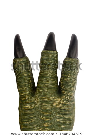 Vert dinosaures patte isolé blanche Photo stock © hittoon