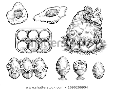farm chicken eggs in cardboard container stock photo © marylooo