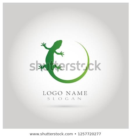 Tribal hagedis groene icon lichaam Stockfoto © sifis