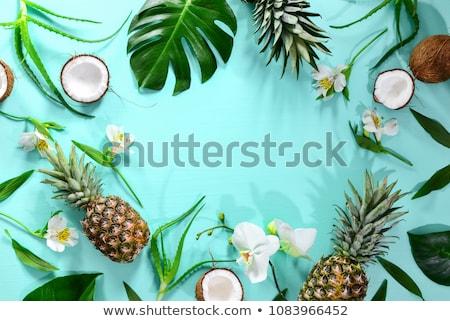 Ananas tropische vruchten voedsel natuur frame Stockfoto © galitskaya