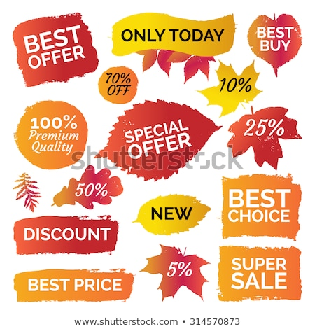 Autumn Sale Banner With Colorful Stain And Leaves Stock photo © adamson