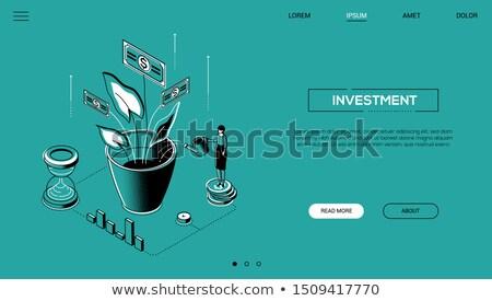 outsourcing · web · analytics · analyse · financiële · groei - stockfoto © decorwithme