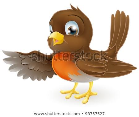 Christmas Robin Redbreast Cartoon Bird Stock photo © Krisdog