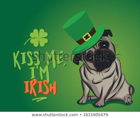 öpücük bana İrlandalı komik Aziz Patrick Günü Stok fotoğraf © Zsuskaa