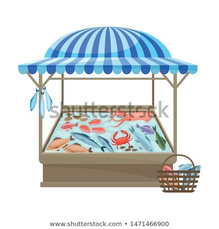 魚 イカ 販売 市場 マドリード スペイン ストックフォト © elxeneize