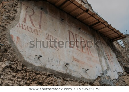 Ancient Human Remains In Pompei Italy Stock photo © feverpitch