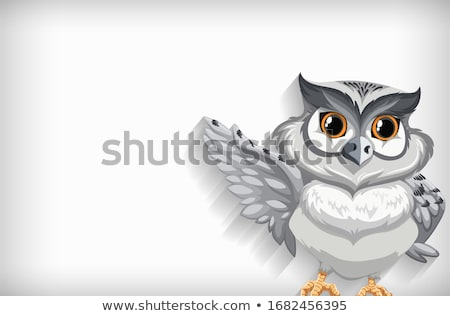 Background template with plain color and snow owl Stock photo © bluering