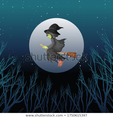 Witch riding broomstick cartoon style on dark sky background Stock photo © bluering