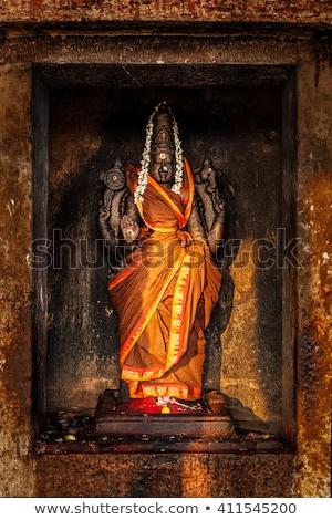 Istennő kép templom India legnagyszerűbb nagyszerű Stock fotó © dmitry_rukhlenko