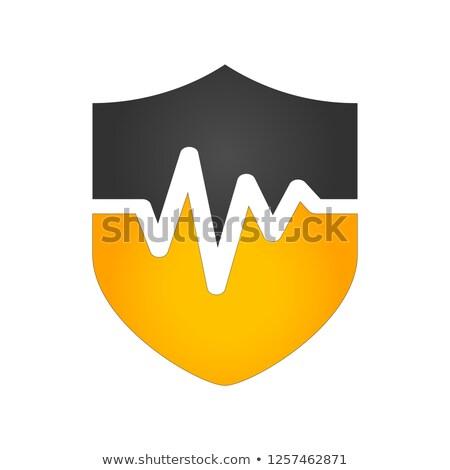 Orvosi védelem pajzs szívdobbanás vonal terv Stock fotó © SArts