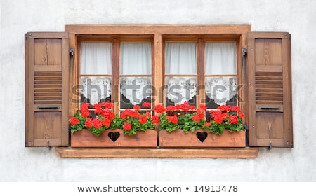 Old wooden windows with drape  Stock photo © Ansonstock
