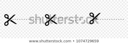 vektor · vág · olló · utalvány · keret · vonalak - stock fotó © milmirko
