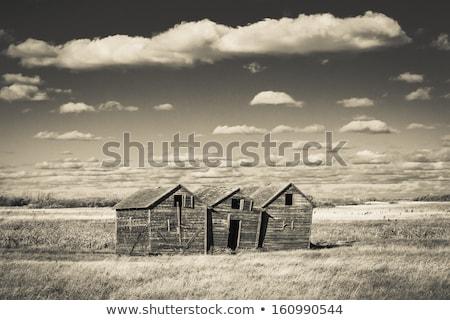 Abandoned wood grain storage bin in Saskatchewan Stock photo © Sandralise