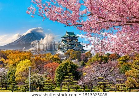 Japán kastély kép felhők épület tájkép Stock fotó © TsuneoMP