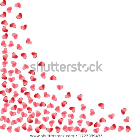 rosas · preto · natureza · morta · amor · feliz · natal - foto stock © bogumil