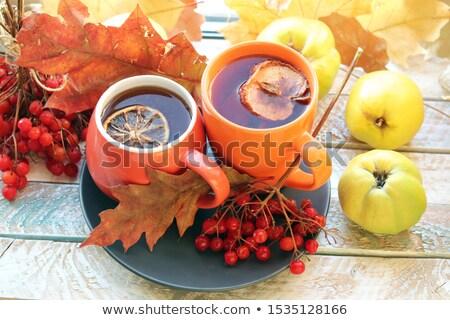 пару груши изолированный белый продовольствие плодов Сток-фото © adamr