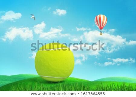 hierba · verde · cielo · azul · cielo · hierba · verano · espacio - foto stock © Paha_L