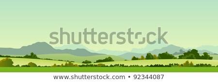 Summer Season Country Banner Stock photo © benchart
