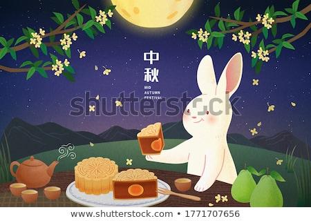 Chinese geïsoleerd witte festival maan Stockfoto © yuliang11