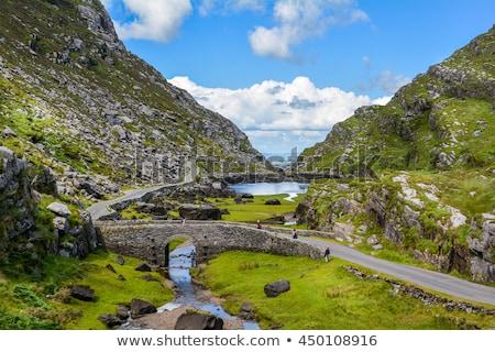 Lago barche acqua parco repubblica Irlanda Foto d'archivio © rafalstachura