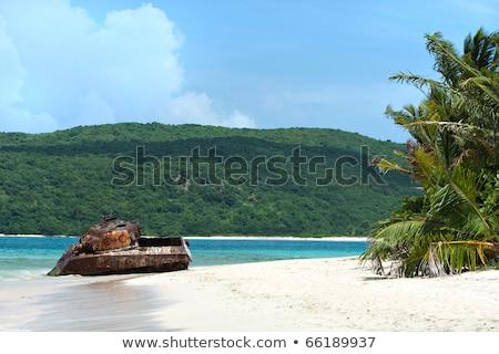 Flamenco tengerpart sziget puerto rico-i káprázatos fehér homok Stock fotó © ArenaCreative