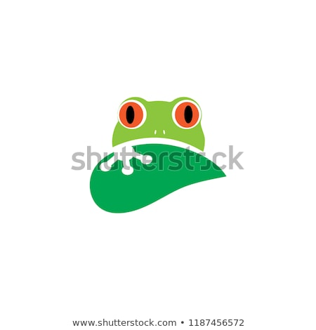 heureux · point · sur · quoi · grenouille - photo stock © jorgenmac
