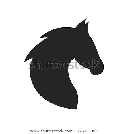 vektor · sziluett · fej · ló · fehér · természet - stock fotó © cidepix