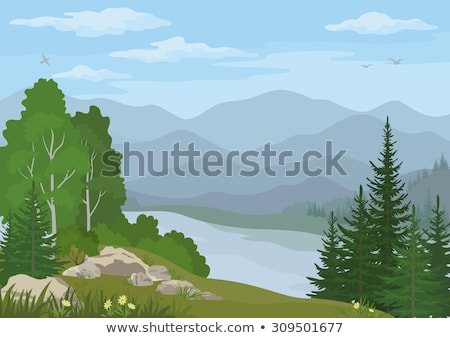 pine forest under cloudy blue sky in mountain stock photo © mycola