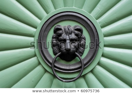 historical ornate iron door prague czech republic stock photo © zhukow