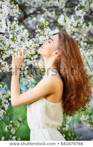 Lady Spring in the cherry orchard Stock photo © konradbak
