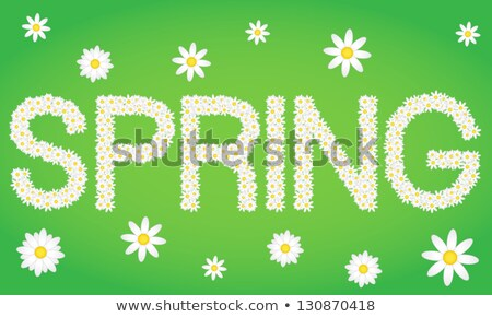 Spring tag composed from daisy flowers Stock photo © liliwhite