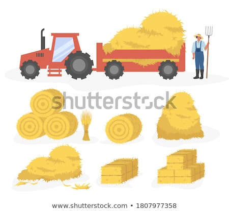 Round Hay Bales Stock photo © rghenry