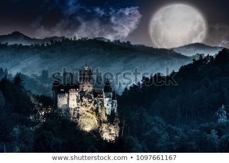dracula castle  Stock photo © tony4urban