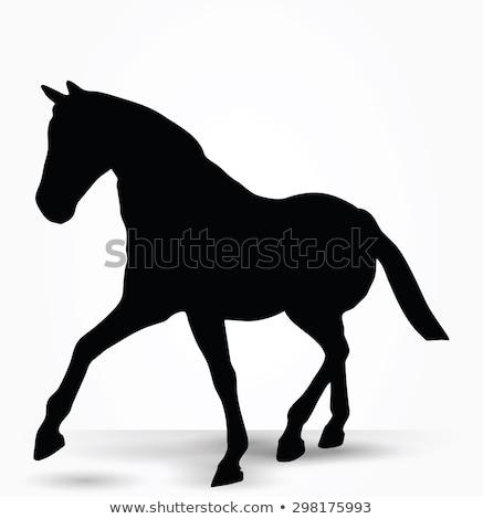 Konia sylwetka parada chodzić stanowią wektora Zdjęcia stock © Istanbul2009