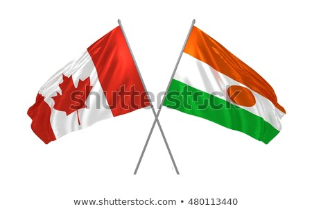 Канада Нигер флагами головоломки изолированный белый Сток-фото © Istanbul2009
