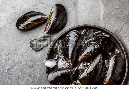 Raw mussels on ice Stock photo © Digifoodstock