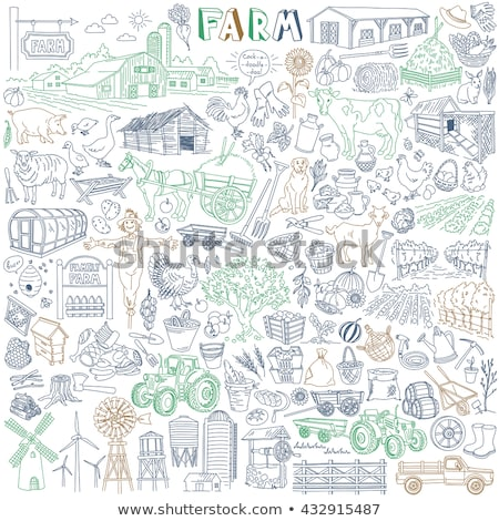 A simple sketch of the farm animals and the harvested vegetables Stock photo © bluering